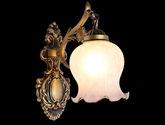 花型玻璃灯罩 防氧化五金灯体 欧美风格1头壁灯